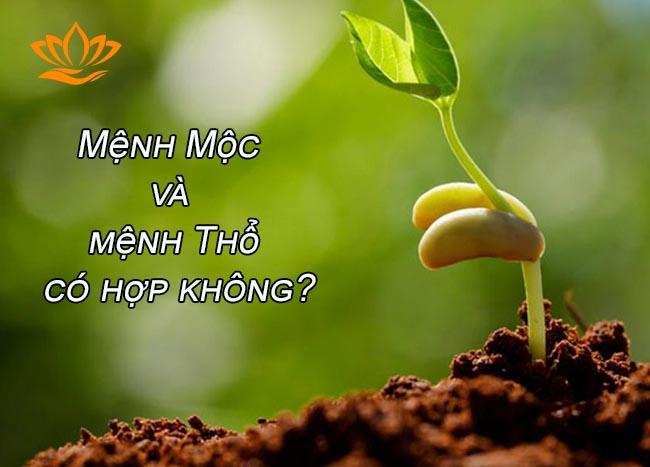 menh moc va menh tho co hop khong