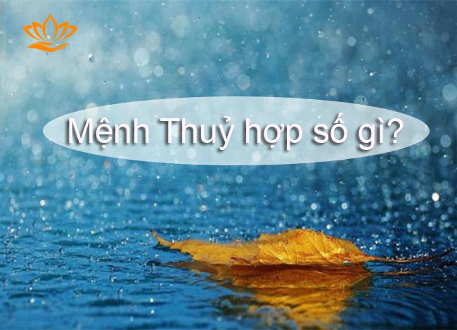 menh thuy hop so gi?